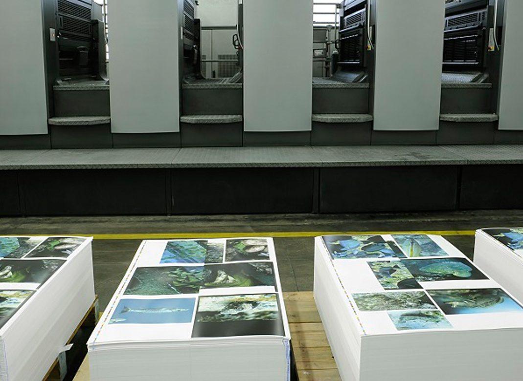 Offset: Qué es y cómo aprovechar bien este sistema de impresión